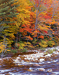 Swift River, New Hampshire