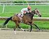 Private Sale winning at Delaware Park on 4/30/11