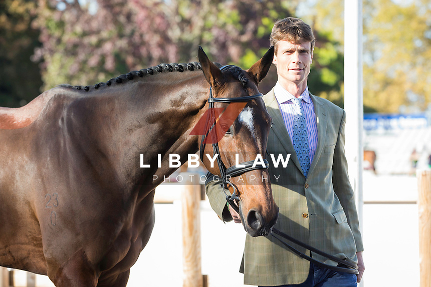 GBR-William Fox-Pitt (PARKLANE HAWK) CCI4* FIRST HORSE INSPECTION: 2014 FRA-Les Etoilles de Pau (Wednesday 22 October) CREDIT: Libby Law COPYRIGHT: LIBBY LAW PHOTOGRAPHY - NZL
