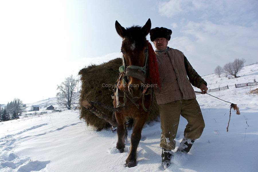 Farmer  Hutsul coming back to his village witha load of hay on his horse sledge. Near Suceava valley