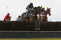 Gentle George ridden by Mr R Jarrett in jumping action in the Neptune Investment Management Novices Hurdle (Sidney Banks Memorial Novices Hurdle)