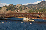 iron, bridge, Canada geese, Big Thompson River, woman, walking, dog, fall, November, morning, Lake Estes Trail, Estes Park, Colorado, Rocky Mountains, USA