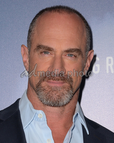"08 January  - Pasadena, Ca - Chris Meloni. Arrivals for the WGN America Winter TCA Tour ""Underground"" held at The Langham Hotel. Photo Credit: Birdie Thompson/AdMedia"