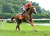 Most Likely winning at Delaware Park on 7/27/17