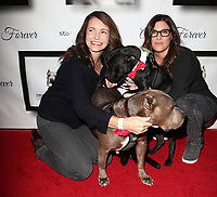 Josh Wolf05 November 2017 - Hollywood, California - Kristin Davis, Rebecca Corry. 7th Annual Stand Up For Pits held at Avalon Hollywood. <br /> CAP/ADM/FS<br /> &copy;FS/ADM/Capital Pictures