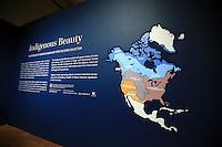 2/12/16 Indigenous Beauty