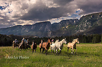 Wyoming Cowboys Cowboy and Cowgirl photographs of western ranches working with horses and cattle by western cowboy photographer Jess Lee. Photographing ranches big and small in Wyoming,Montana,Idaho,Oregon,Colorado,Nevada,Arizona,Utah,New Mexico.