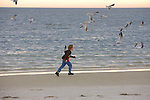 Boy Running After Birds Laughing Gulls