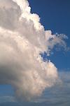 Puffy white Cumulonimbus storm cloud in blue sky.