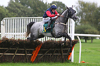 Races winner Persian Herald ridden by Trevor Whelan in jumping action during the Pudding Norton Conditional Jockeys Selling Handicap Hurdle