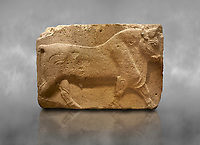 Phrygian relief sculpted orthostat stone panel, 1200-700 B.C. Anatolian Civilisations Museum, Ankara, Turkey. Figure of a walking bull. <br /> <br /> Against a grey art background.