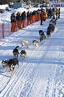Saturday, February 24th, Knik, Alaska.  Jr. Iditarod musher Kristen Crain leaves start line on Knik Lake