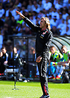 Peru coach Ricardo Gareca during the 2018 FIFA World Cup Russia first-leg playoff football match between the NZ All Whites and Peru at Westpac Stadium in Wellington, New Zealand on Saturday, 11 November 2017. Photo: Dave Lintott / lintottphoto.co.nz