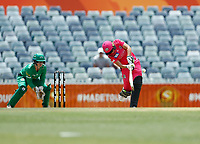 3rd November 2019; Western Australia Cricket Association Ground, Perth, Western Australia, Australia; Womens Big Bash League Cricket, Sydney Sixers verus Melbourne Stars; Alyssa Healy of the Sydney Sixers plays down the ground during her innings - Editorial Use