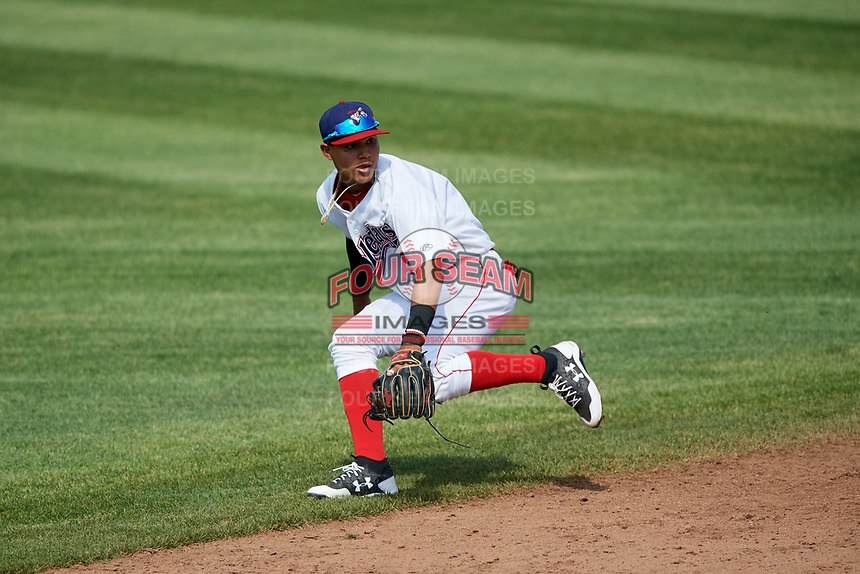 Auburn Doubledays shortstop Jose Sanchez (9) fields a ground ball during a game against the Batavia Muckdogs on June 17, 2018 at Falcon Park in Auburn, New York.  Auburn defeated Batavia 10-8.  (Mike Janes/Four Seam Images)