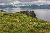Dutch Harbor, Aleutian Islands, Alaska