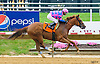 Mirkamurka winning at Delaware Park on 7/4/16
