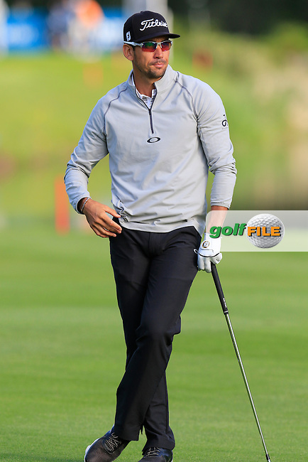 Rafa Cabrera-Bello (ESP) waits to play his 2nd shot on the 17th hole during Thursday's Round 1 of the 2016 Dubai Duty Free Irish Open hosted by Rory Foundation held at the K Club, Straffan, Co.Kildare, Ireland. 19th May 2016.<br /> Picture: Eoin Clarke | Golffile<br /> <br /> <br /> All photos usage must carry mandatory copyright credit (&copy; Golffile | Eoin Clarke)