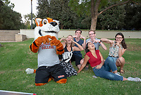 Tiger Club Tailgate, part of Homecoming and Family Weekend 2018. Alumni, students and parents were invited to a tailgate party for food, drinks and plenty of Oxy spirit prior to two athletics events, Oct. 19, 2018 at the Lucille Y. Gilman Memorial Fountain. <br /> (Photo by Marc Campos, Occidental College Photographer)