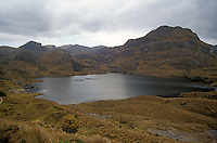 Lake in Casas National Park in the the Andean Paramo, Ecuador, South America