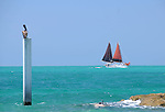 The Shoreline of Fort Myers  in Key West, Florida on May 26,2009                                                                     Copyright 2009 Debbie VanStory / RockinExposures