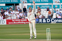 Simon Harmer of Essex claims the wicket of Ollie Rayner during Essex CCC vs Middlesex CCC, Specsavers County Championship Division 1 Cricket at The Cloudfm County Ground on 26th June 2017