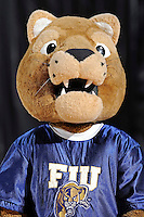 11 November 2011:  FIU's mascot, Roary, fires up the crowd during a break in the action as the FIU Golden Panthers defeated the Jacksonville University Dolphins, 63-37, at the U.S. Century Bank Arena in Miami, Florida.