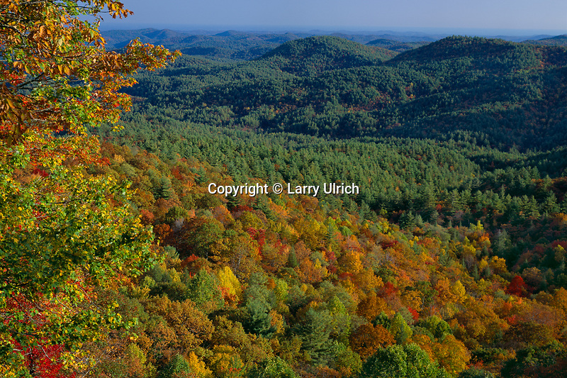 Blue Valley from Blue Valley Overlook<br />
