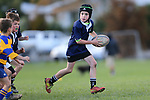 NELSON, NEW ZEALAND - JUNE 8 Junior Rugby on June 8 at Neale Park 2019 in Nelson, New Zealand. (Photo by: Evan Barnes Shuttersport Limited)