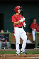 Harrisburg Senators second baseman Cutter Dykstra (7) at bat during a game against the New Hampshire Fisher Cats on July 21, 2015 at Metro Bank Park in Harrisburg, Pennsylvania.  New Hampshire defeated Harrisburg 7-1.  (Mike Janes/Four Seam Images)