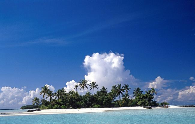 L'ile de Bird island. *** Bird island.