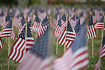 Flags in front of the Administration Building represent the victims of the Sept. 11, 2001 terrorist attacks.<br /> Photo by John Foster | Staff
