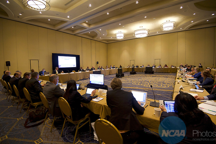 18 JAN 2017: The Division I Council meeting takes place during the 2017 NCAA Convention at the Gaylord Opryland Resort and Convention Center in Nashville, TN.  Jamie Schwaberow/NCAA Photos