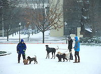Charlotte Snow Photography - Photography of the people walking their dogs at the snow covered The Green in uptown Charlotte North Carolina. <br /> <br /> Photography of snow scenes in Charlotte North Carolina.<br /> <br /> Charlotte Photographer - PatrickSchneiderPhoto.com