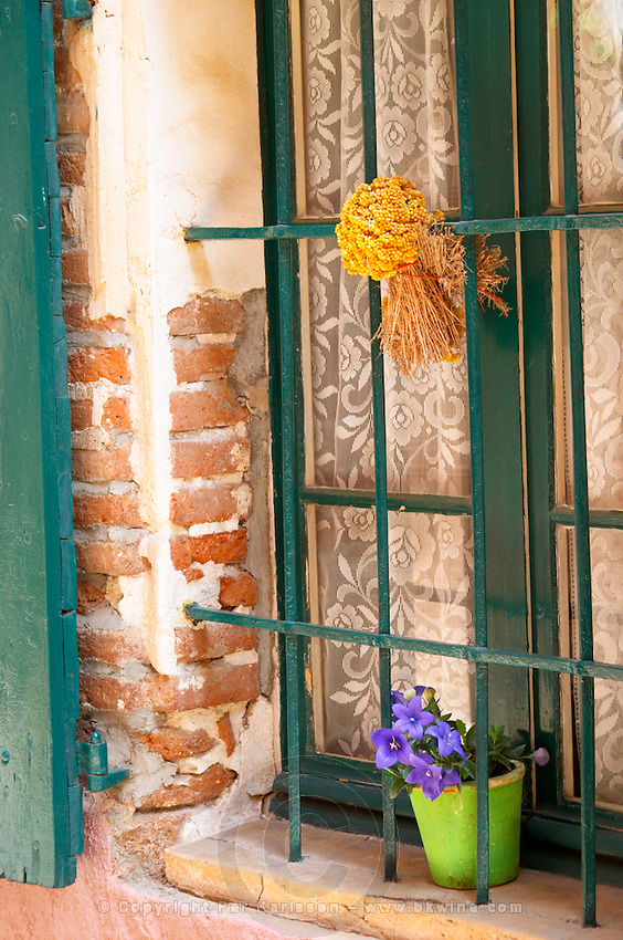 A narrow street in the old town. A bouquet of dried yellow flowers hanging in a window. Collioure. Roussillon. Window. France. Europe. Colourful houses, trees and flowers make the village very pretty.