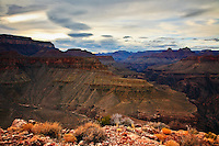 The western Grand Canyon provides a pallette of colors during sunset.  Taken on Horseshoe Mesa via the Grandview Trail.