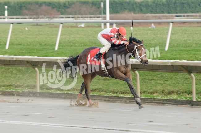 Hard Spun in his 2nd start winning The Port Penn Stakes on November 14, 2006