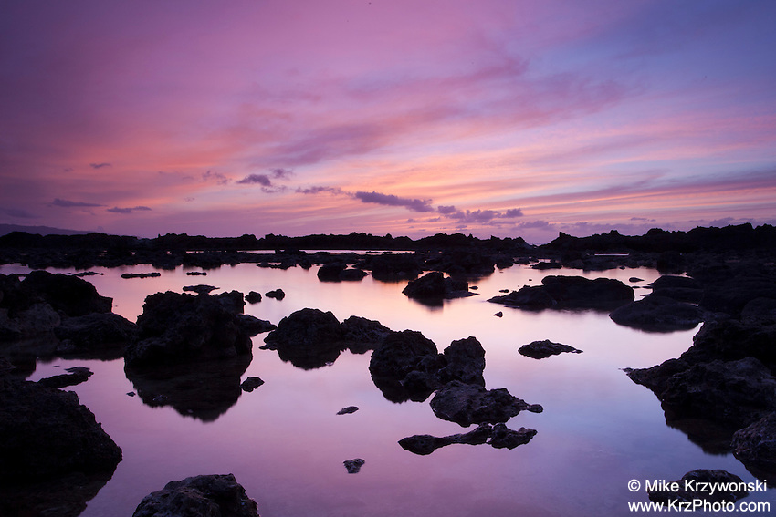 Purple sunset reflecting off of tide pool at Shark's Cove, Oahu