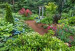 Whidbey Island, Washington: Pathway through woodland garden with hostas, valerian, ajuga and barberry