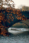 Rowing, The Head of the Charles Regatta, Rowing on the Charles River, Boston, racing shell under the Kennedy St Bridge in autumn, Massachusetts, New England, USA,