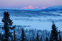 Winter landscape of Mount Drum and Mt. Sanford and spruce tree forest valley  taken from  Glacier View Area of the Matanuska River Valley in Southcentral, Alaska