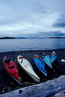 Colorful line-up of kayaks on a Pelican Beach, Cypress Island,  gray morning, San Juan Islands, Washington