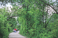 419-49 Family hiking along I&M Canal Hiking Trail, between Chanahon State Park and McKinley Woods Forest Preserve in Will County, Illinois