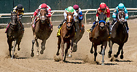 ELMONT, NY - JUNE 09: The field enters the turn in the  the Ogden Phipps on Belmont Stakes Day at Belmont Park on June 9, 2018 in Elmont, New York. (Photo by Dan Heary/Eclipse Sportswire/Getty Images)