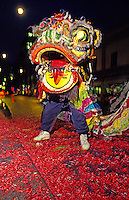 Front view of a Chinese Lion dancer standing on a bed of red firecracker warppers in Chinatown, downtown Honolulu during Chinese New Year.