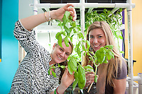 Maggie Kane,'12, and Zoe Moskwa,'15, show off a basil plant while setting up a hydroponics station in one of the classrooms at the Pell School in Newport.