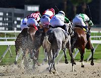 02-10-18 Sam F Davis Stakes Day Tampa