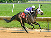 Miss Modela winning at Delaware Park on 7/17/17