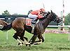 Excessive Drama winning at Delaware Park on 9/11/14