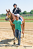No See Um winning at Delaware Park on 9/7/15
